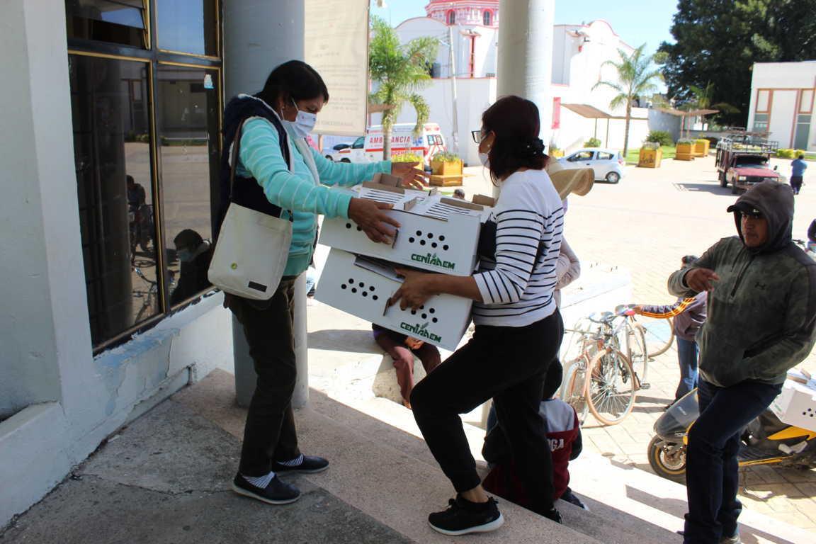 127 familias de Tepetitla de Lardizábal recibieron aves de traspatio