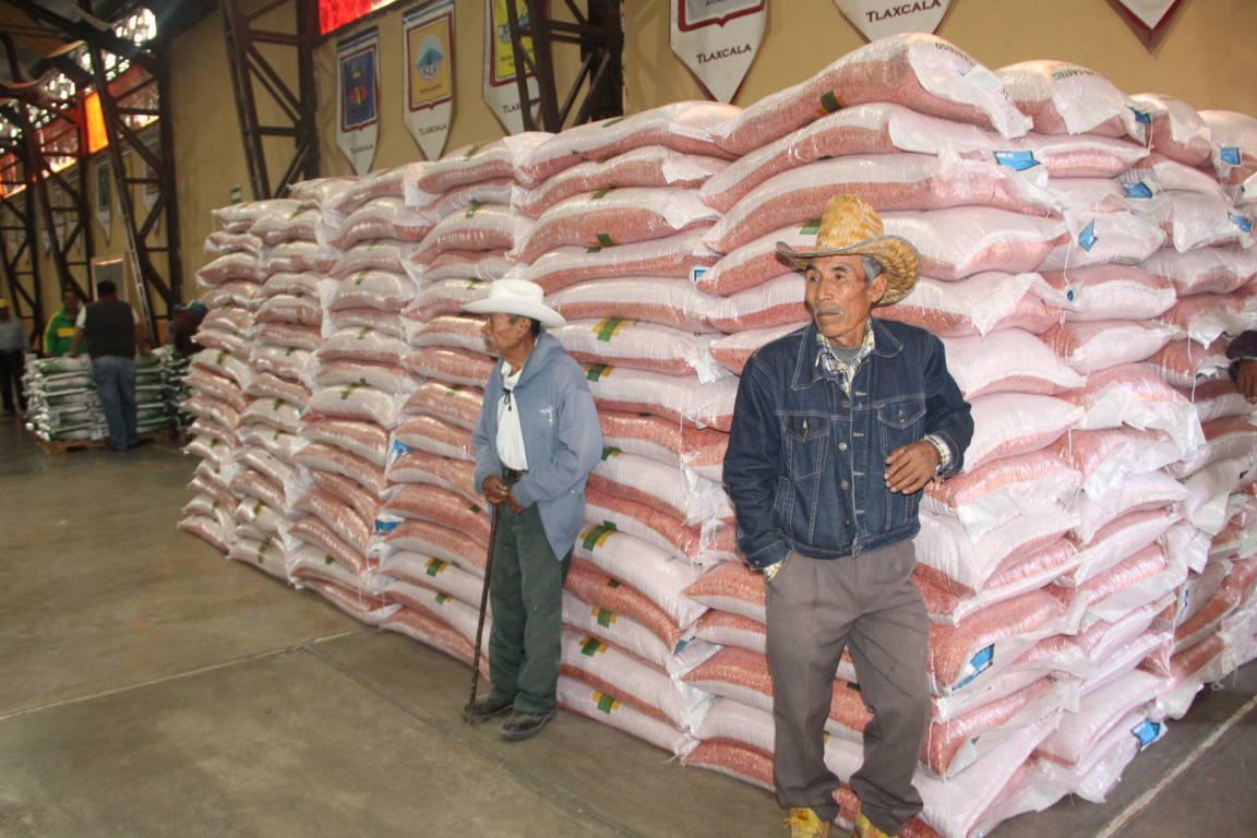 Alcalde apoya la economía de 9 mil campesinos con fertilizantes y semillas