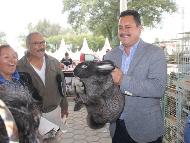 Con talleres la gente del campo y productores mejoran su calidad de vida: alcalde