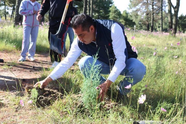 Inicia Héctor Domínguez Rugerio trabajo de reforestación en Santa Cruz Guadalupe