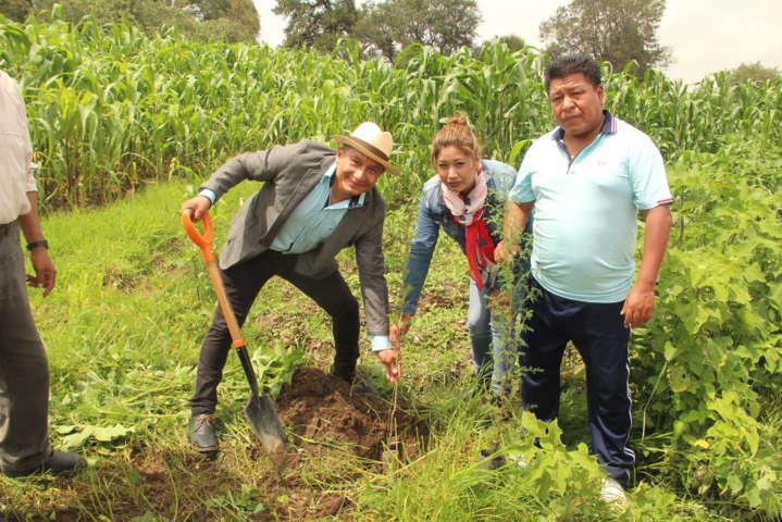 Regenerar el medio ambiente es responsabilidad de todos: alcalde Quilehtla
