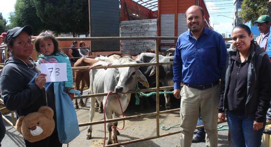 Entrega Ayuntamiento De Santa Cruz Tlaxcala becerros para engorda
