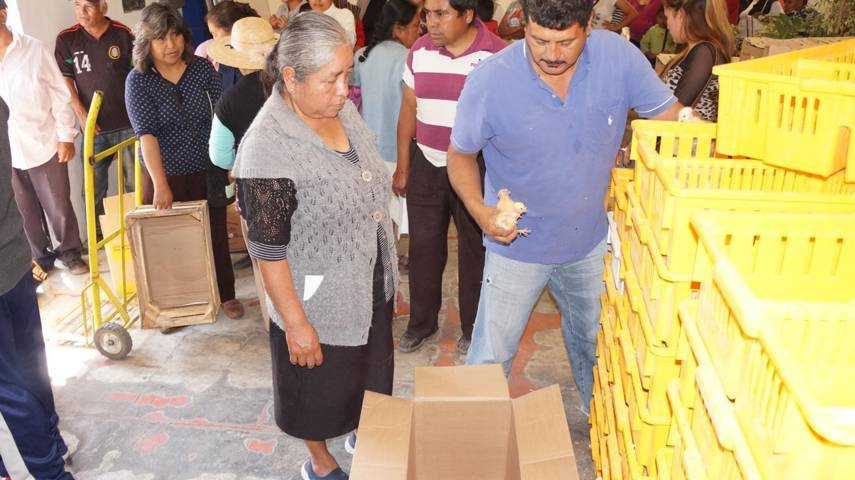 DIF Municipal, entrega paquetes de especies menores en SPM