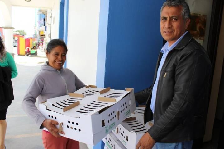 El departamento de desarrollo social de SPM entrega apoyos de aves de corral