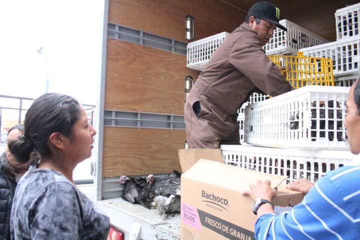 Ayuntamiento entrega 105 paquetes de animales de traspatio a familias vulnerables