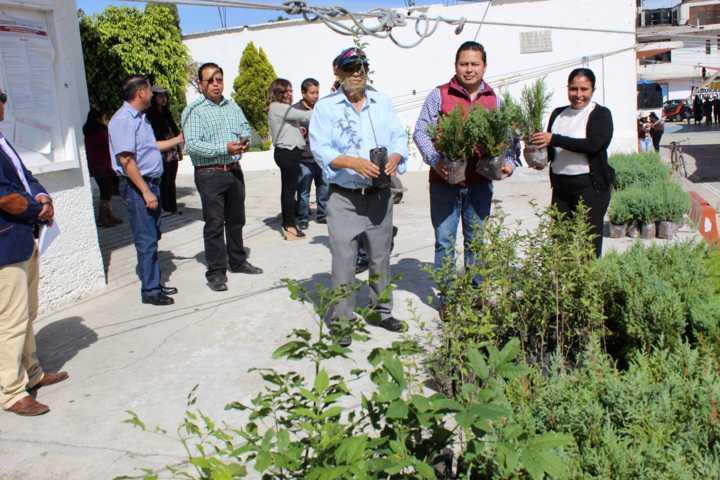 En Lardizábal serán plantados más de 4 mil arbolitos