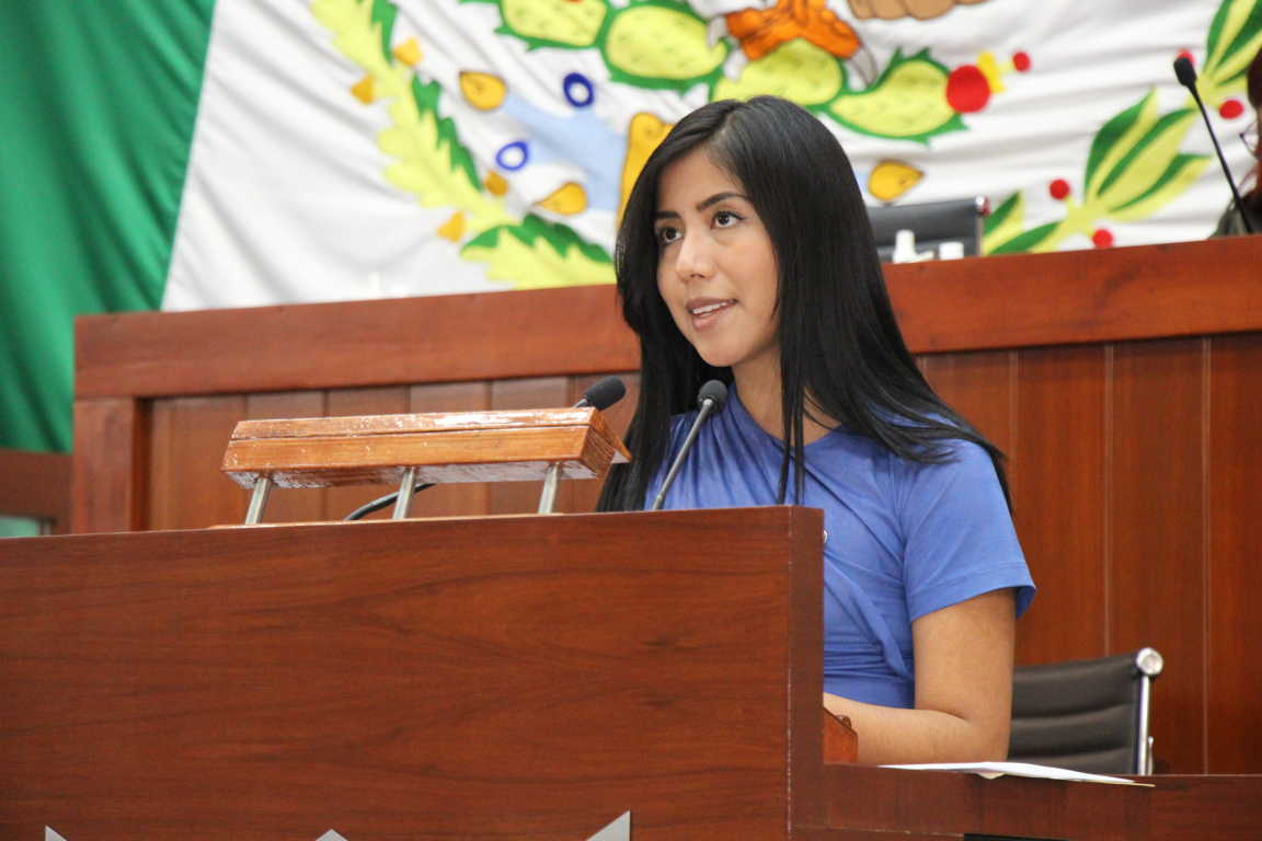 Propone María Félix Pluma apoyar a jóvenes y mujeres víctimas de violencia