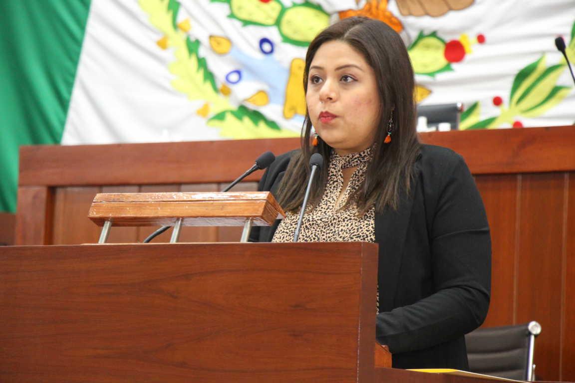 Plantea Irma Garay incluir en la constitución la violencia política contra las mujeres