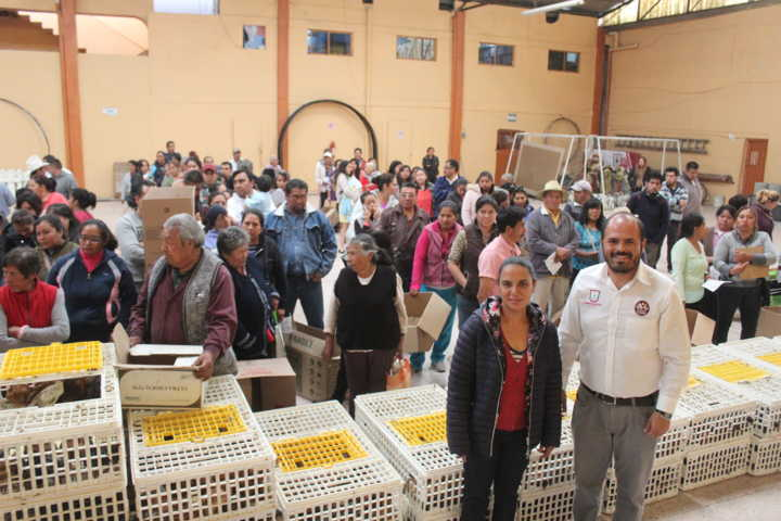 Alcalde de Santa Cruz Tlaxcala entrega 150 paquetes de aves de traspatio