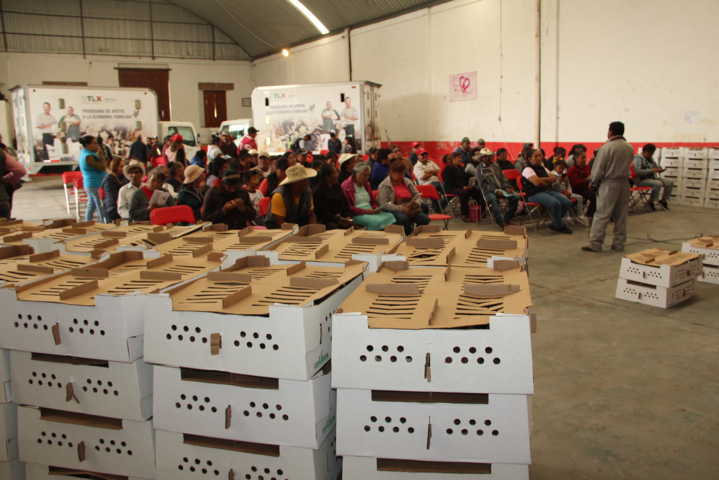 Ayuntamiento entrega 234 paquetes de animales al 50 por ciento