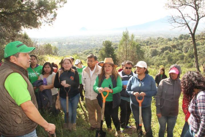 Con la reforestación en zonas siniestradas mejoramos nuestra calidad de vida: alcalde