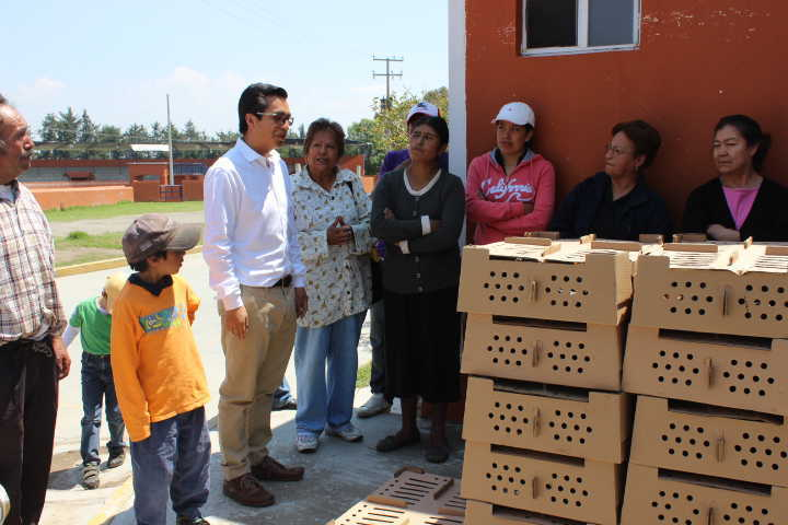 Realizan entrega de paquetes de aves de postura a familias de Huamantla