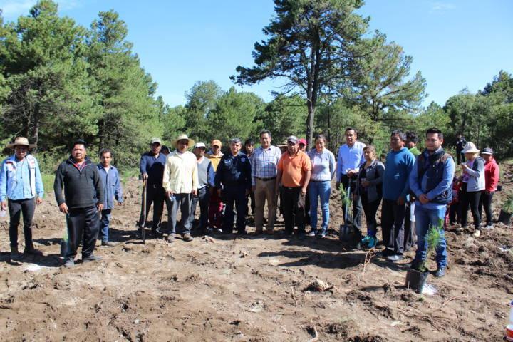 Cano Coyotl encabeza campaña de reforestación de 900 arboles