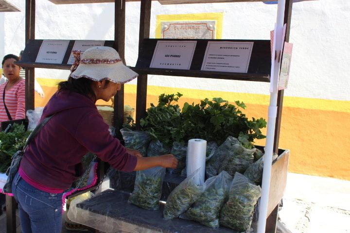 Instalan en Huamantla mercado de huertos familiares