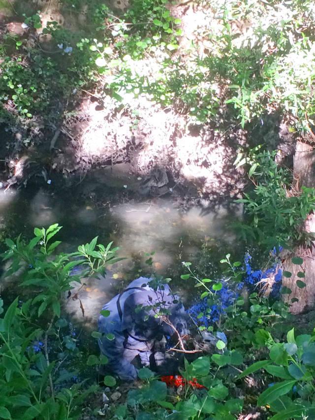 En Texoloc, limpian 300 m de carril cerca del Río Totolac II y retiran 2 árboles caídos de su cauce