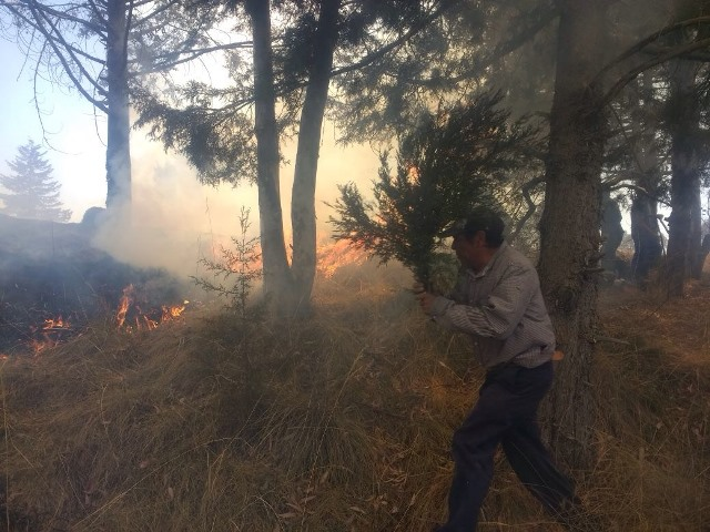 Se incendia ejido de Huiloapan en Panotla