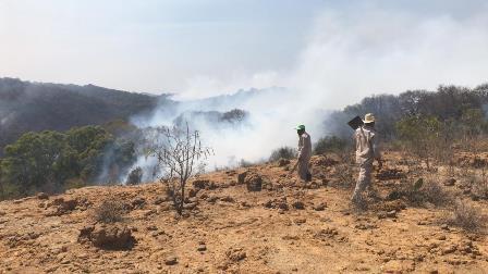 Brigadistas combaten incendio en cerro El Ostol de Tizatlán