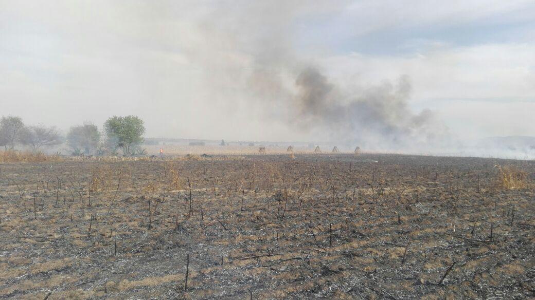 Protección Civil y Seguridad de Ixtenco refuerzan combate de incendios