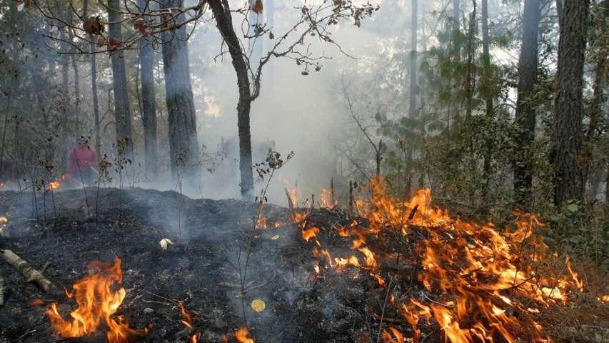 Se entrega equipo a brigada CONAFOR que apoyarán en combate de incendios forestales