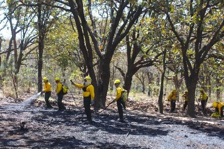 Incendios forestales se intensifican en abril y mayo