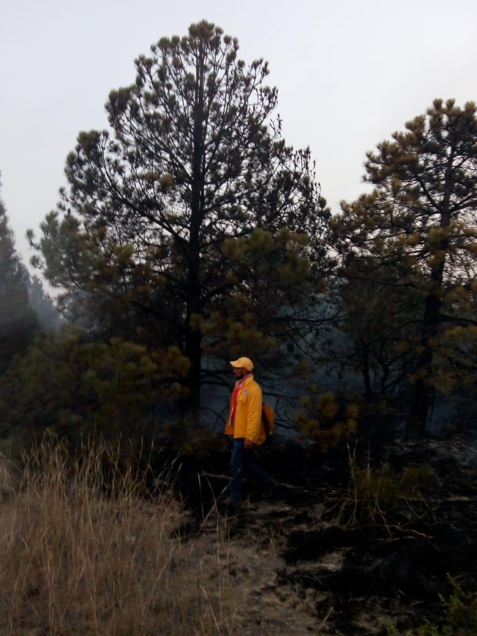 Atendió Protección Civil de Tlaxco 25 incendios en el primer trimestre del año