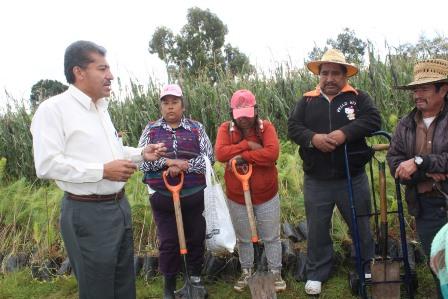 Mejoran el medio ambiente sembrando  10 mil árboles