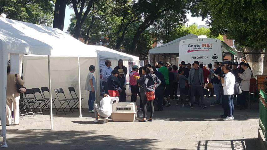 Efectúan Jornada Integral de Salud y Campaña de Vacunación Antirrábica en la capital