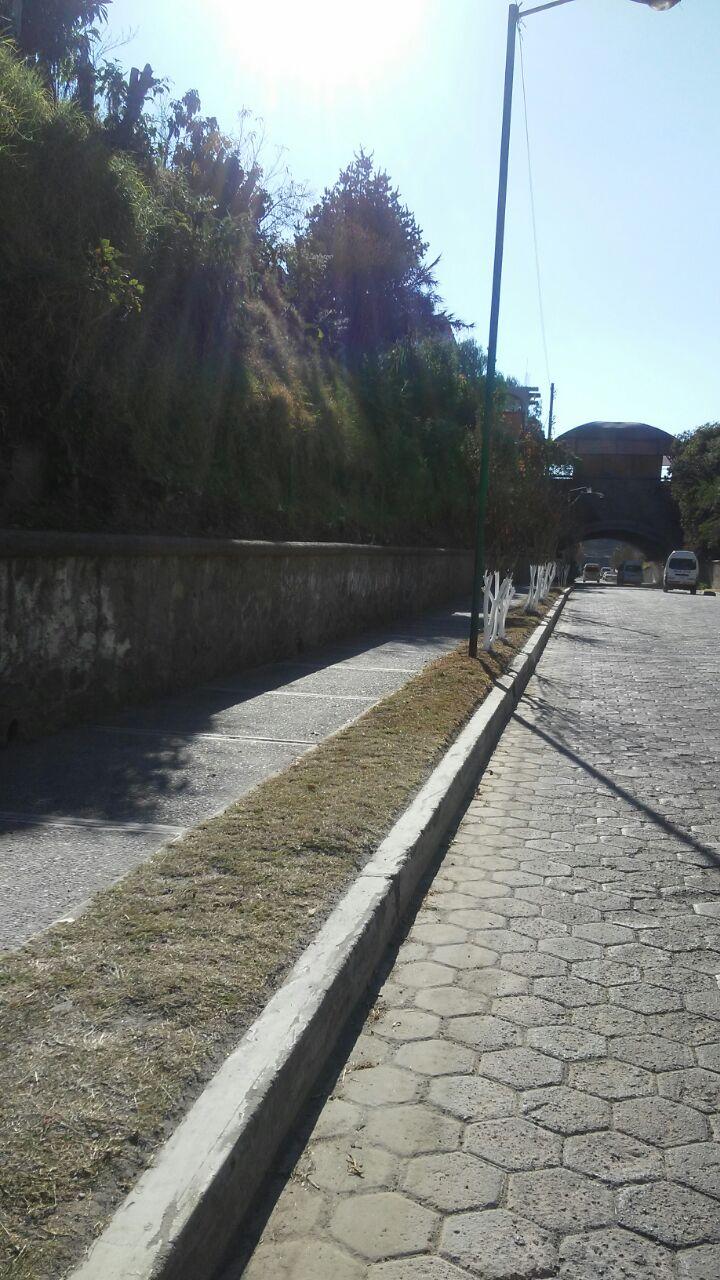 "Efectúa Ayto. Capitalino jornadas de limpieza en avenida ""Joaquín Cisneros"": Cahuantzi González"