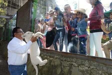 Asisten cientos de familias a conocer a la cachorra de león blanco