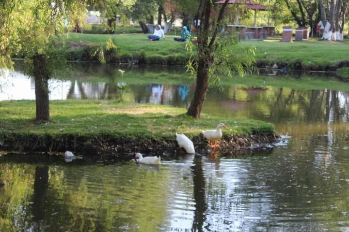 Vigilará Protección Civil de Xicohtzinco, zona ecológica en Semana Santa