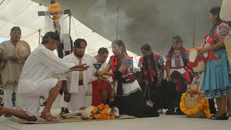 Festividades del Mole de Caderas en Tehuacán tendrá modificaciones
