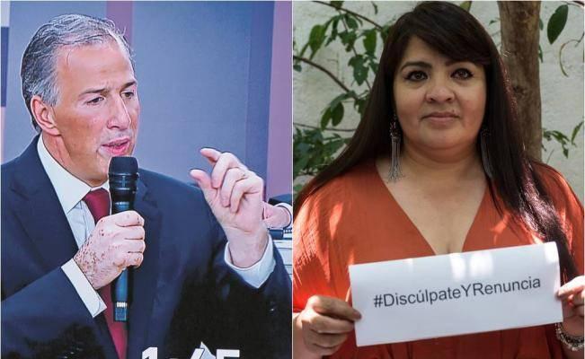 Por contar con doble nacionalidad, Nestora Salgado es inelegible para el Senado: PRI