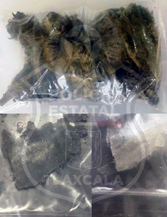 Policía asegura a persona con marihuana y cristal en Apizaco