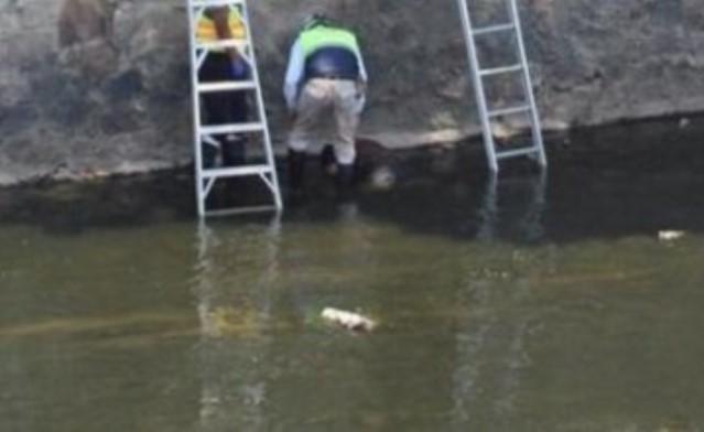 Cae al río Zahuapan y pierde la vida