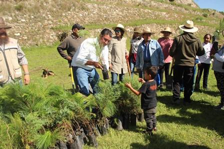 Siembran 7,500 árboles para restar daños de 23 incendios