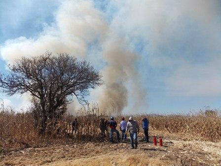 Exhorta ayuntamiento de Nanacamilpa evitar incendios forestales