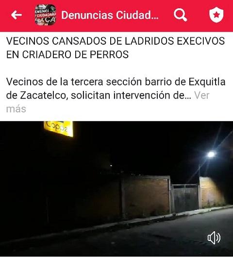 Vecinos de Zacatelco están cansados de irregular criadero de perros