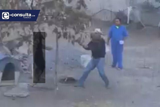Investigará la PGJE maltrato animal en Hueyotlipan por video viral
