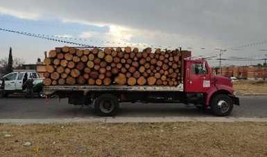 Profepa asegura 25.794 metros cúbicos de madera plagada
