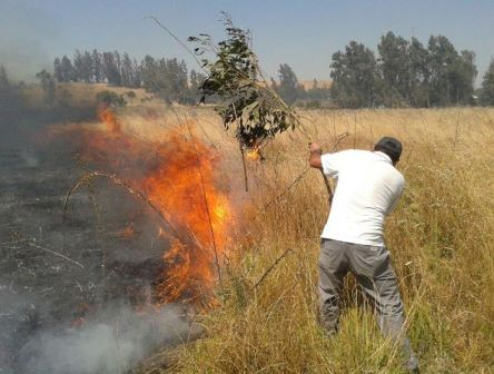 Lejana la posibilidad de legislar para prohibir quemas agrícolas