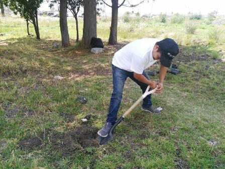 Ecojoven Apizaco, continúa con acciones de reforestación