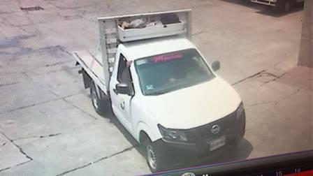 Ahora roban falsos judiciales camioneta de Pollos Lobo
