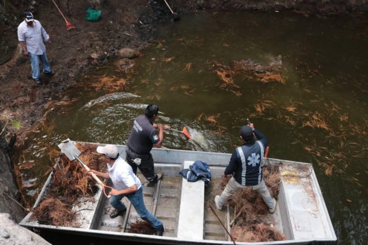 Se lleva a cabo saneamiento del Jagüey Cuetlachac y Ameyal de San Pedro Tlalcuapan
