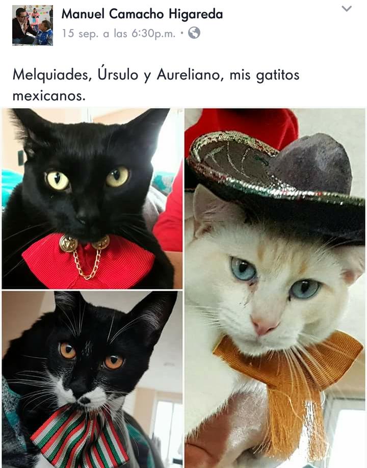 Secretario de Educación da  grito de Independencia con sus tres gatos