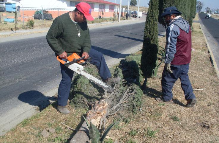 Ayuntamiento de Huamantla realiza mantenimiento  de  áreas verdes