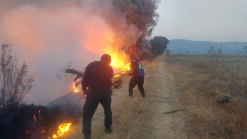 Seguridad Pública Municipal combate incendio en campos de Texóloc