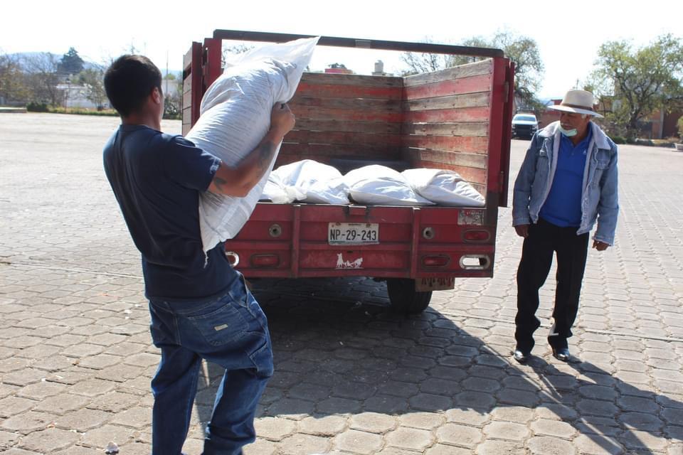Finaliza entrega de 126 toneladas de fertlizante gratuito, en Tlaxco