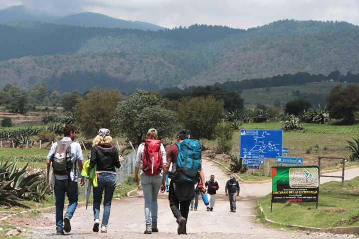 Arriban más de 58 mil visitantes al santuario de las luciérnagas: Secture