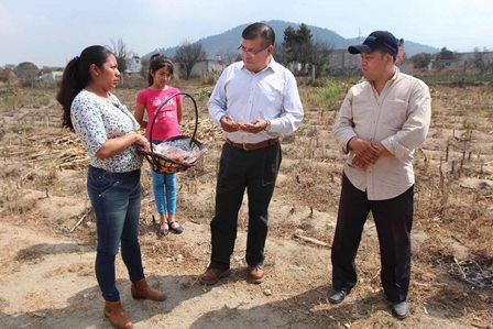 Sefoa impulsa en Tlaxcala  producción de alimentos de traspatio