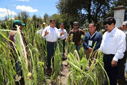 Sefoa respalda a familias del campo a través del seguro agrícola